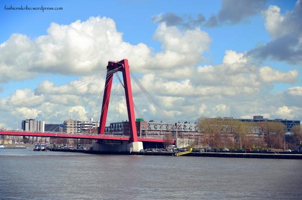 Rotterdam 41
